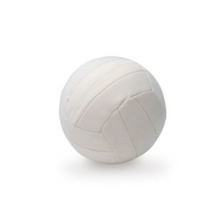 Neoprene Sports ball