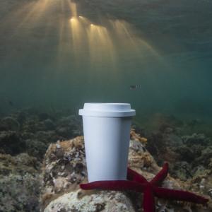 Cup Petel